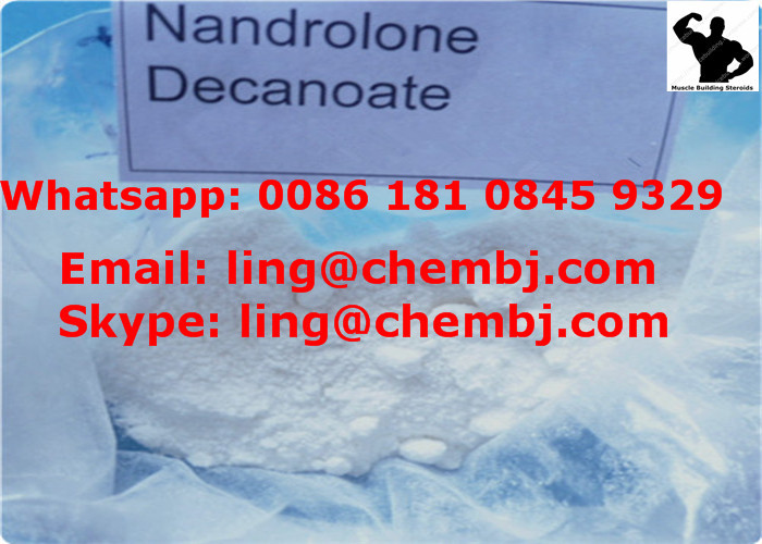 Nandrolone Undecylate CAS: 862-89-5 Body Building Hormone Steroids White Powder