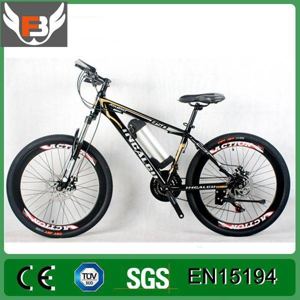 Brushless Rear Hub Motor Electric Bicycle 250W/Made-in-China Bike