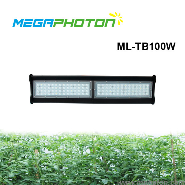 2ft 100w Red/Blue Spectrum LED Top Grow lighting for hydroponics green house