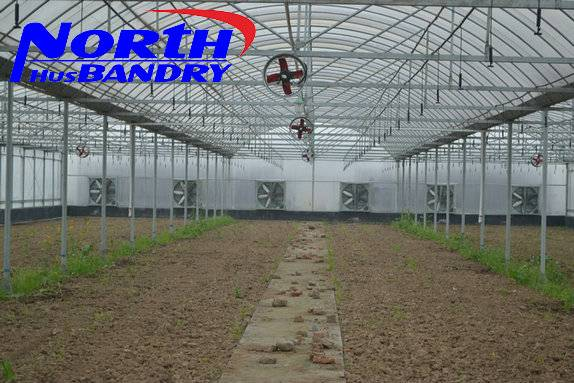 Winter Sunlight Greenhouse for agriculture