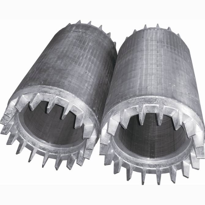 rotor for low-voltage high-power motor