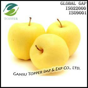 Fresh Golden Apple
