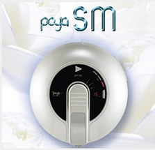Self-Type RF System (Poya SM)
