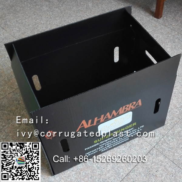 Customized Tote corrugated packing box/Polypropylene Corrugated Plastic Tote Box