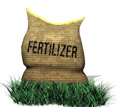 Fertilizer and Urea
