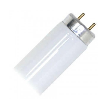Fluorescent Tube Lamp