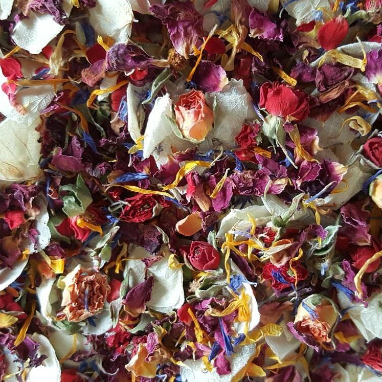 Wholesale: Buds & Petals