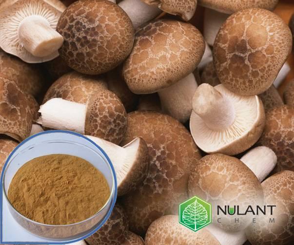 Shiitake Mushroom extract 40% Polysaccharides