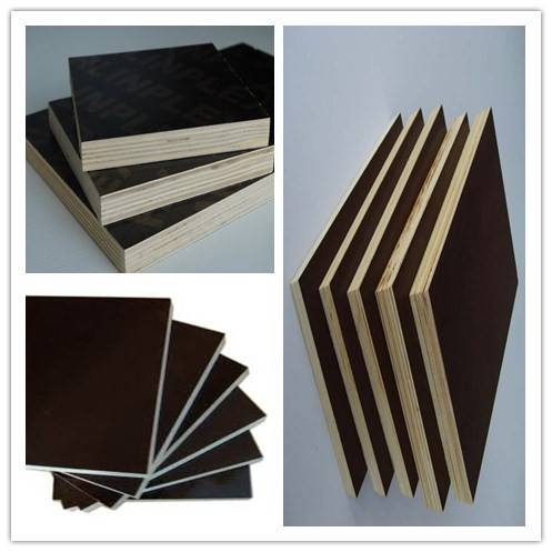 low price plywood/high quality film faced plywood from China