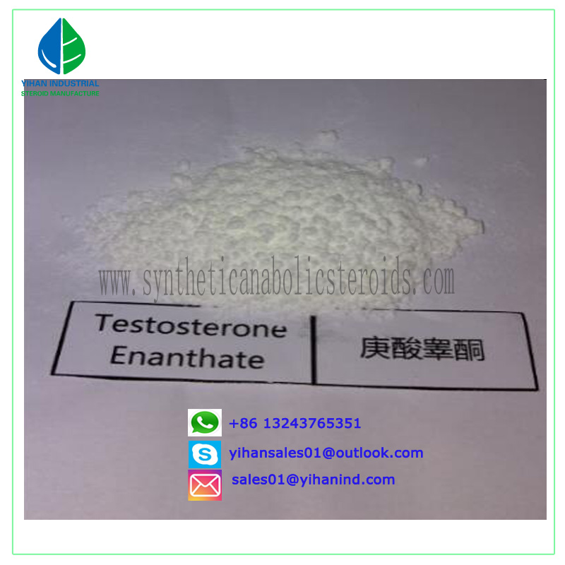 99% Raw Steroid Powders Testosterone Enanthate Test Enanthate Muscle Mass 315-37-07 Judy