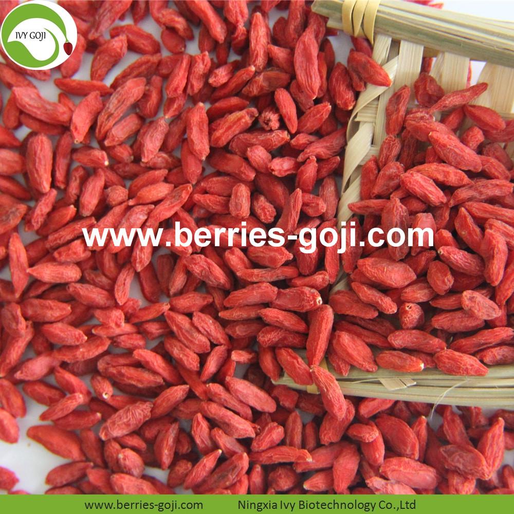 Factory Supply Nutrition Dried Lycium Barbarum