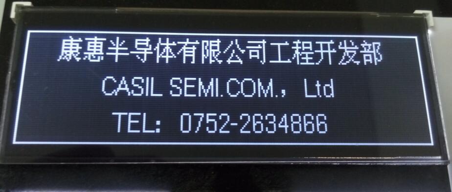 256X64 Dots Va LCD screen Display Module - Casil
