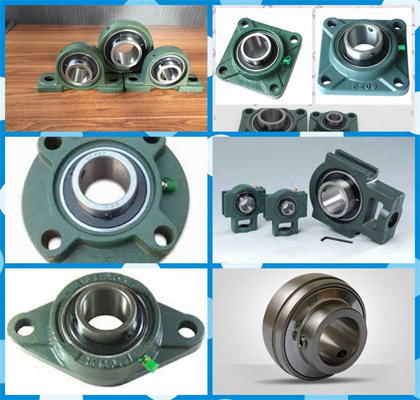Pillow block bearing insert bearing and bearing with housing