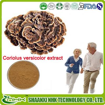 Prefessional manufacturer supply high quality coriolus versicolor extract