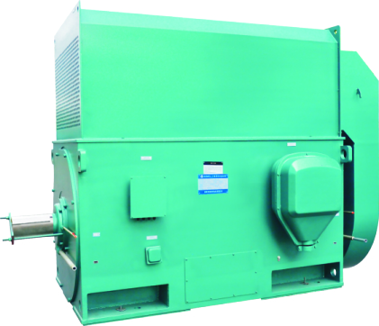 High voltage 1485rpm 4P electric motor 1000kw