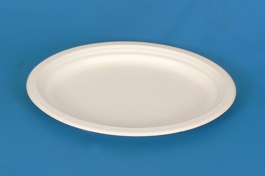 """12"""" Oval Disposable Sugarcane Plates"""
