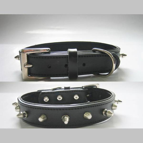 Leather Dog Collar  with Metal Nails and Leash