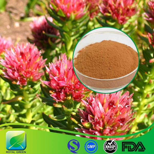 100% Pure Natural Rhodiola Rosea Extract