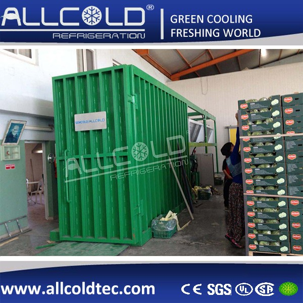 Broccoli/Vegetable Vacuum Fast Cooling Machine Processing Machinery in Malaysia for Leaf