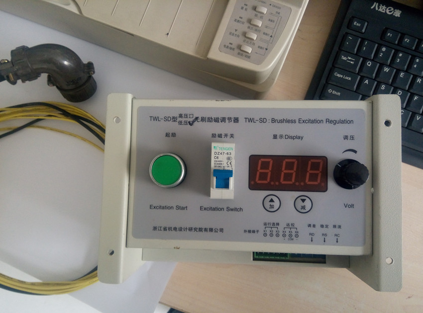TWL-SD Brushless Excitation Regulation