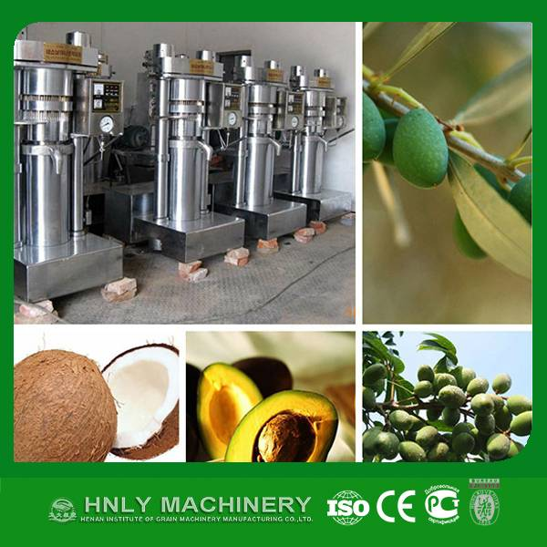 high oil output cooking oil hydraulic press machine