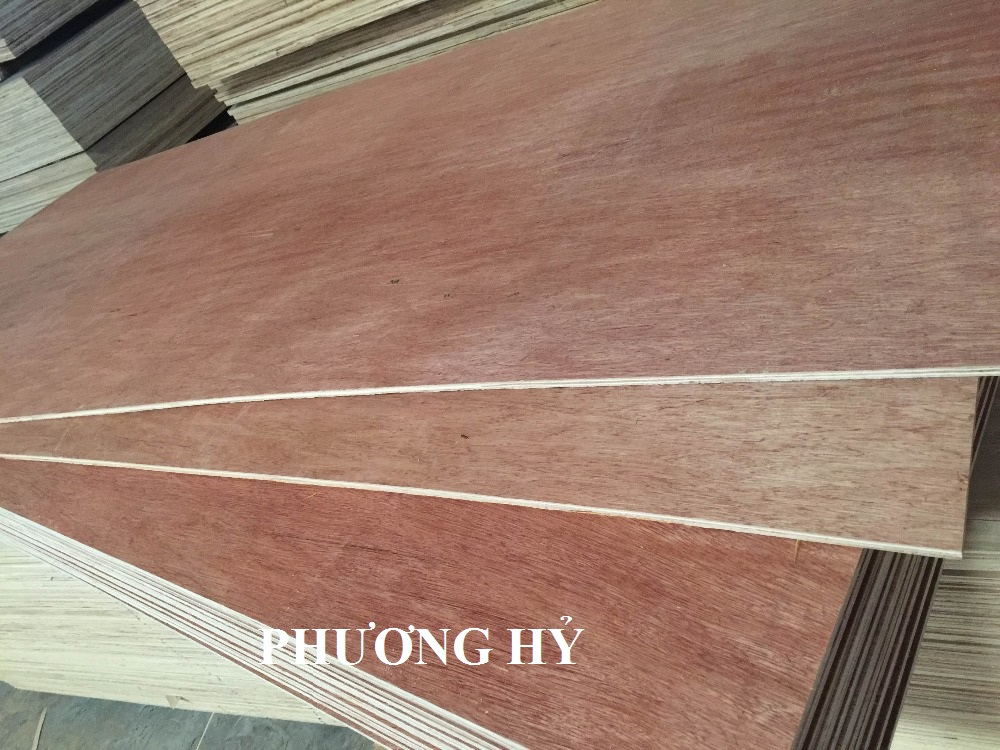 Sell Bintangor plywood 4x8 flash deal