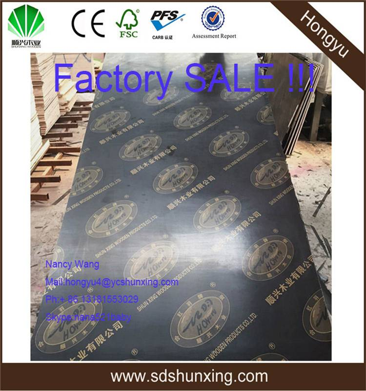 WBP Glue Plywood Cheap Black Film Faced Plywood
