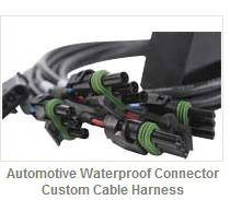 Electronic Harness and Assemblies