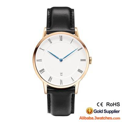 wholesales-daniel-wellington-watches-3w-dw17
