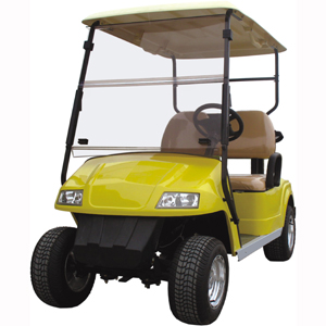 Electric golf cart 2 seats