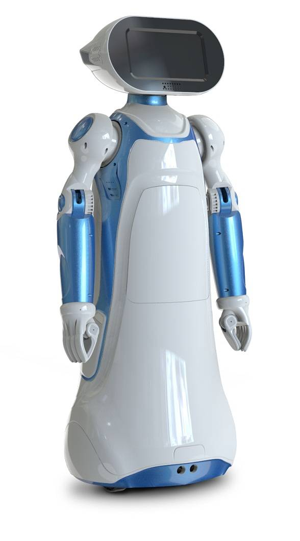 Multilanguage Walking Robot with Arms for Health Care and Home Security Services