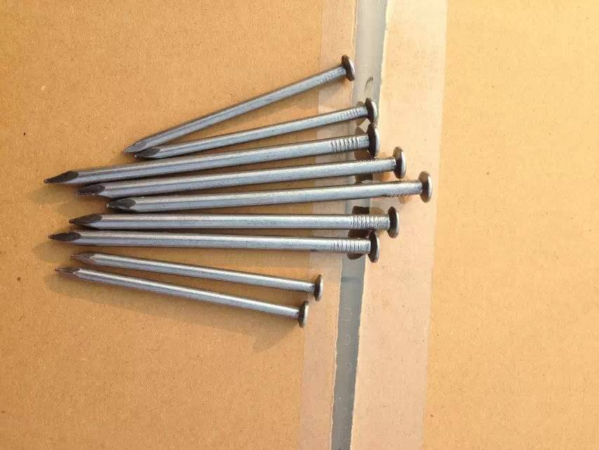 common wire nail from direct manufacturer