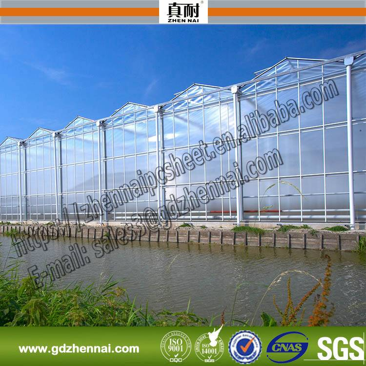 ROHS SGS GE lexan plastic 100% Virgin material polycarbonate plastic for agricultural greenhouse