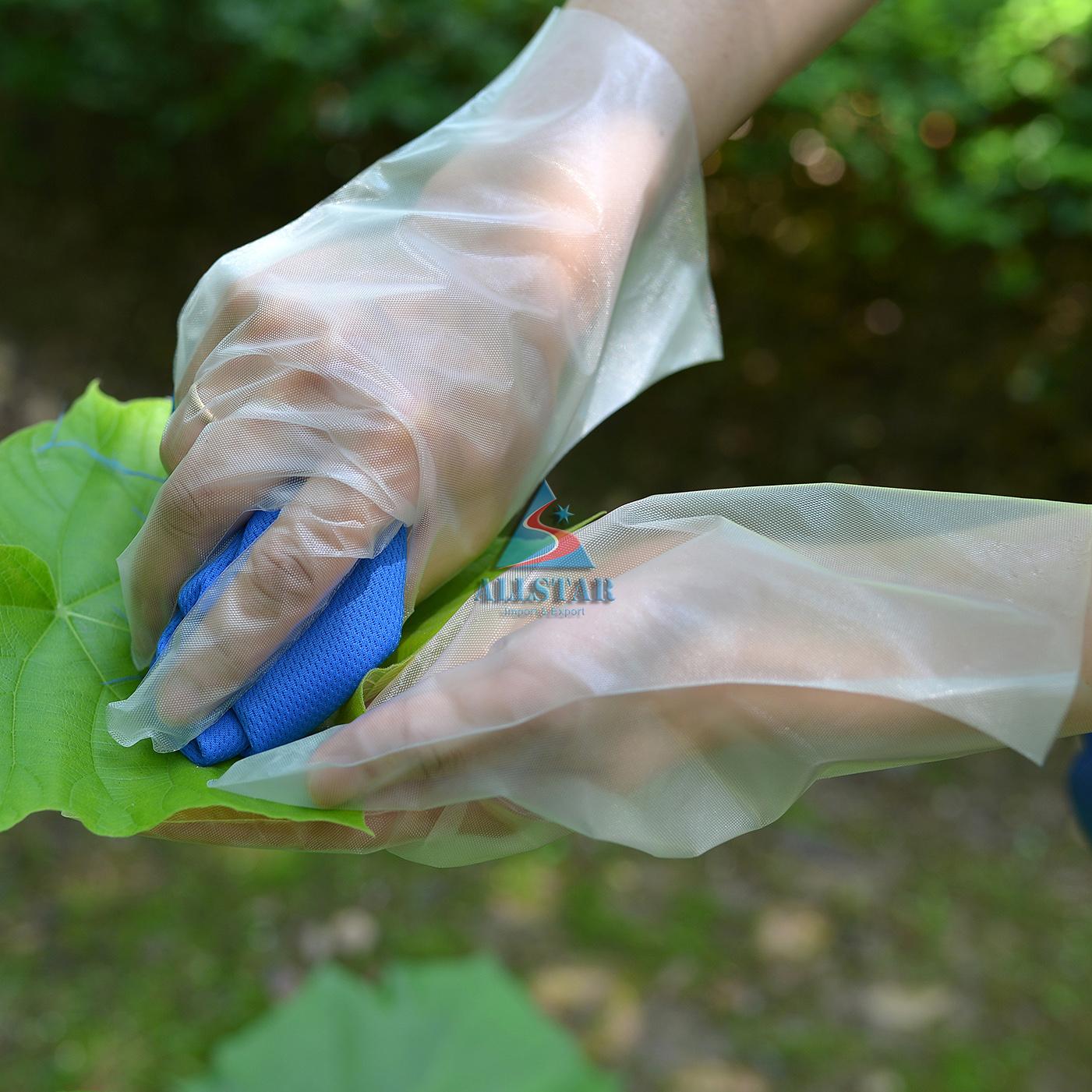 Disposable Plastic Glove CPE Glove