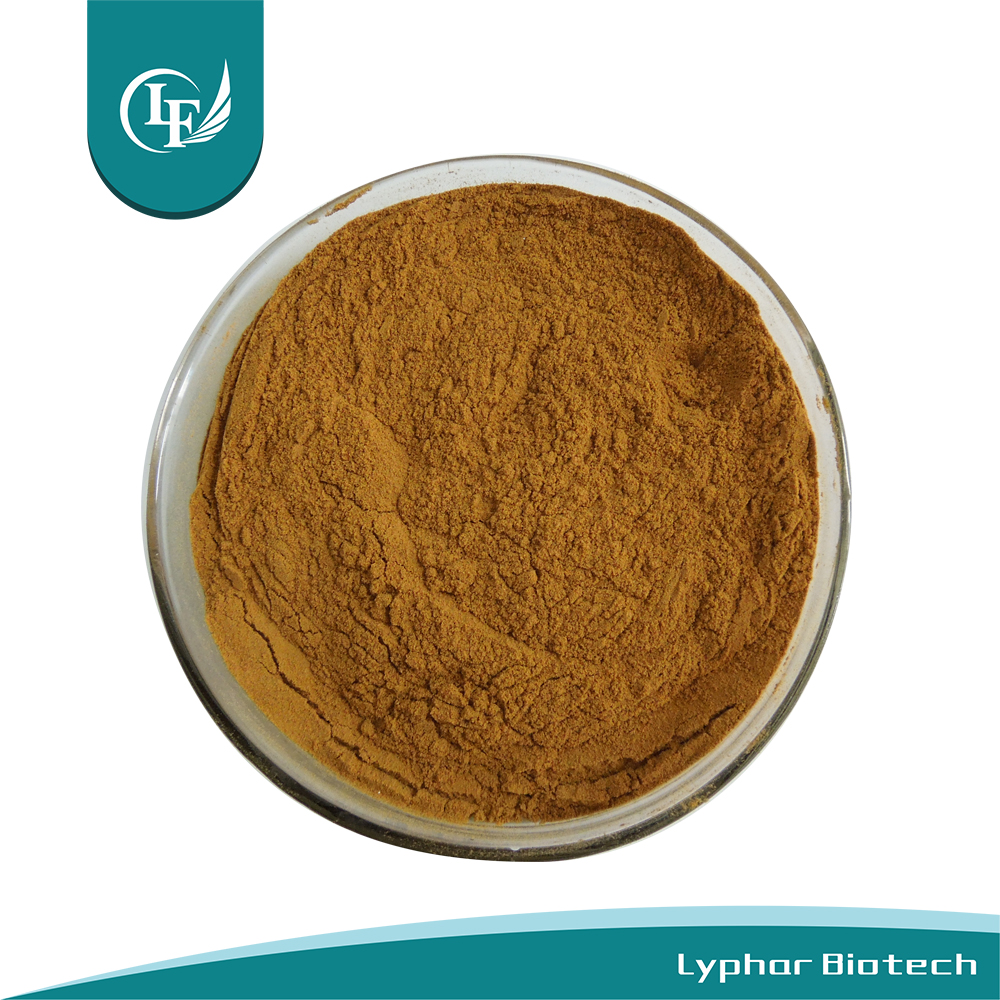 ISO Factory Supply Fiveleaf Gynostemma Extract
