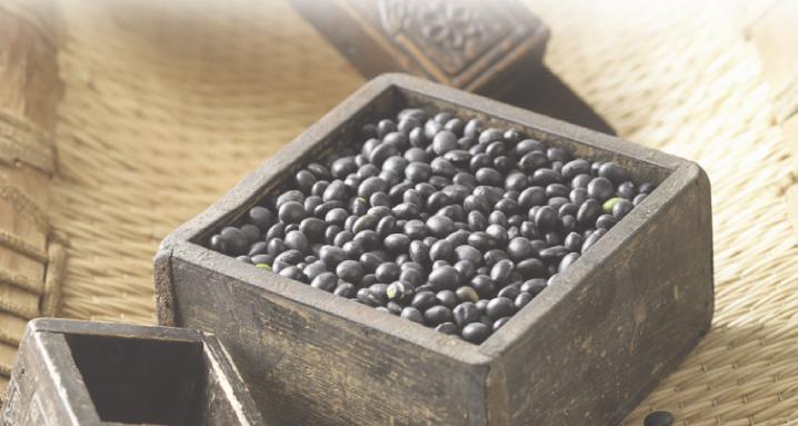 blackfoo of chungnamsoo,the firststory, blackbean