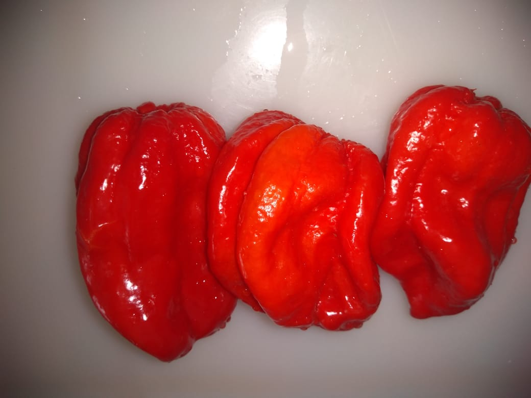 Brazilian Habanero Peppers Whole or Puree