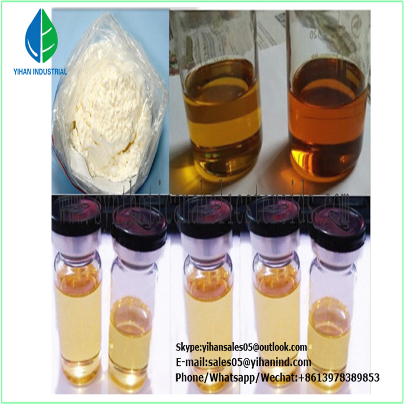 High Purity Oral Turinabol/Tbol (CAS#: 2446-23-3) 4-Chlorodehydromethyltestosterone Factory Price