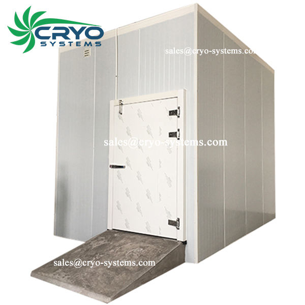 frozen ice cream storage cold room , walkin freezer , pvc curtain cold room