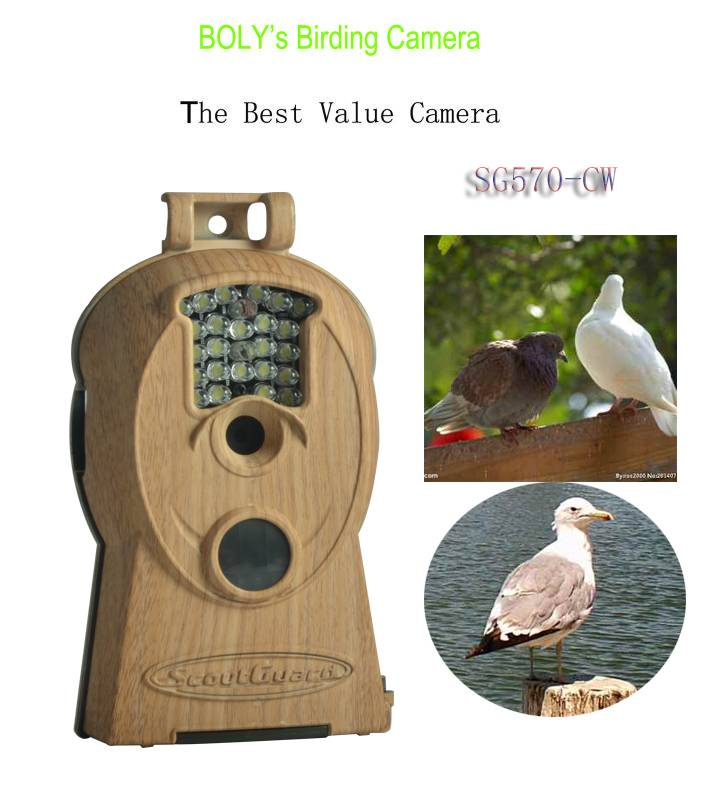 High Quality Bird watching binoculars telescope Hunting Trail Scouting Camera with color day and nig