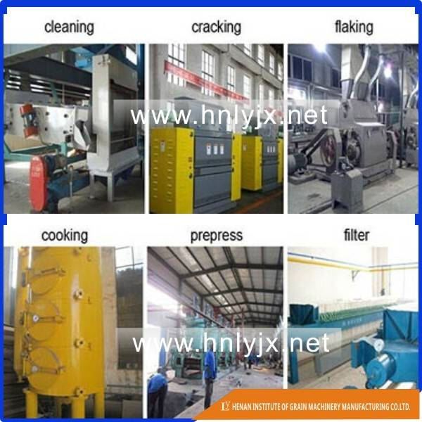 100Ton per day rice bran oil producing plant