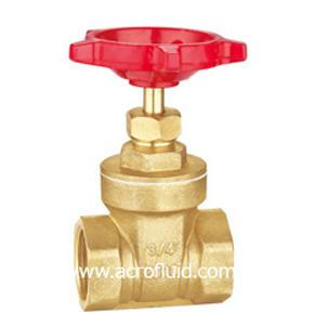 brass gate valve ABV301006