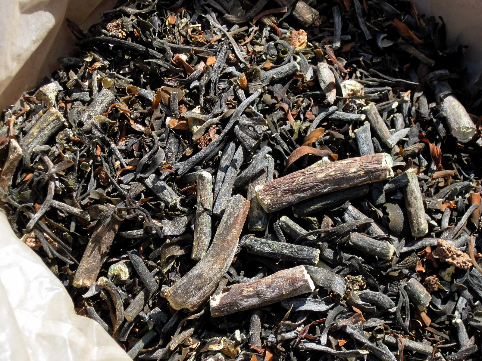Seaweeds Lessonia Nigrences