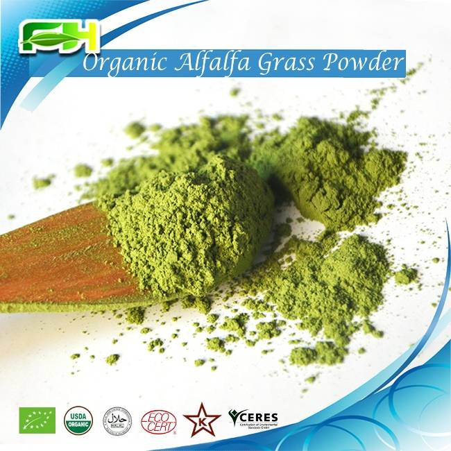 Organic Alfalfa Grass Powder/Organic Alfalfa Grass Juice Powder