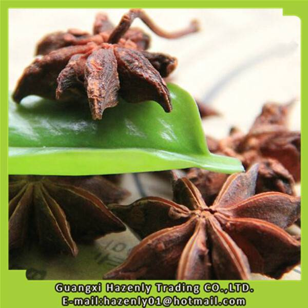 Dried star aniseed with stem