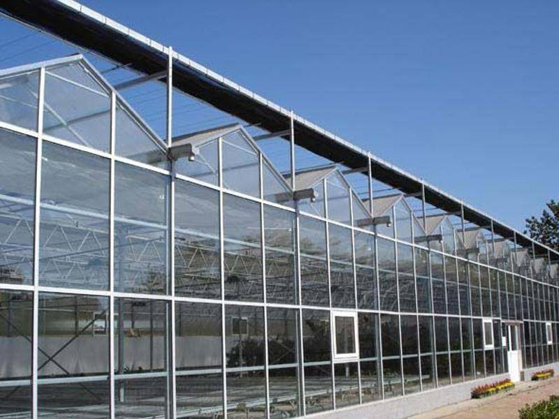 The Cheapest and Easily Installed Sainpoly Agricultural/Commercial Glass Greenhouse