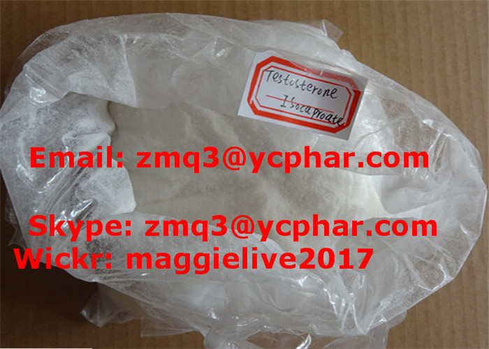 Injectable Anabolic Steroid Testosterone Isocaproate CAS 15262-86-9