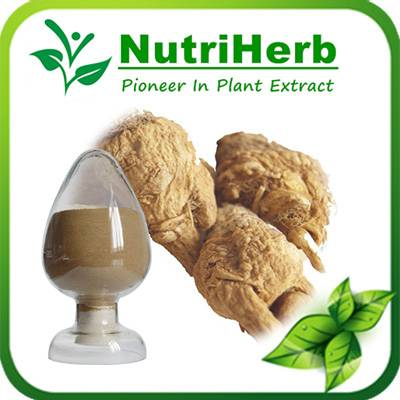 Natural Maca Root Extract Lepidium meyenii Extract