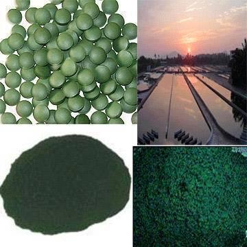 natural spirulina powder, green spirulina powder, hawaiian spirulina