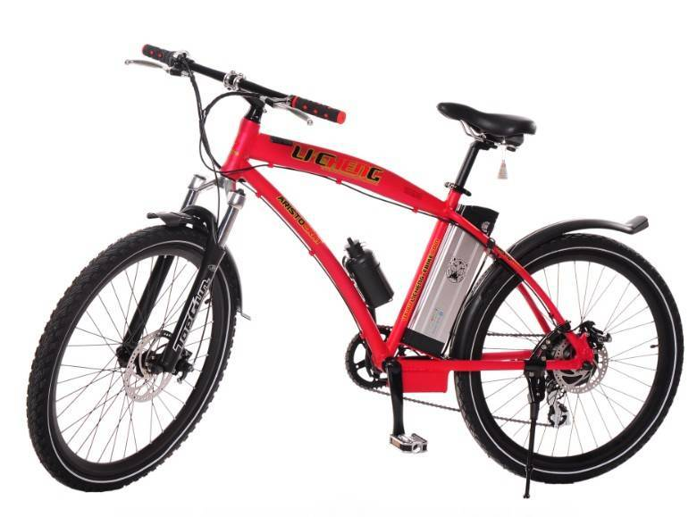 Mountain Electric Bike(Lithium Battery) 2613A
